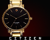 c | Watch in Gold - male