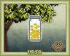U. Jar Of Wishes
