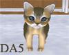 (A) Brown Kitten