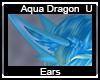 Aqua Dragon Ears