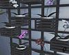 Aesthetic Wall Plants