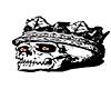 Skull Floor Emblem