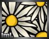 lmL Daisies 1