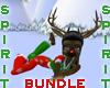 *S* Rudolph Bundle