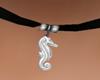 ( K ) Choker seahorse