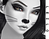 ! L! Kitty Skin II . ML