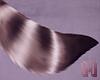 🅜 ROI: tail 1