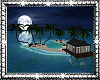 Moonlight Oasis