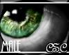 {CSC} Rarge Green (M)