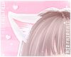 F. Kitten Ears White