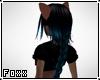 ~Ponytail Blu