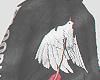 Bird Hoddie