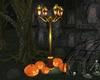 J* HH21 lamp/pumpkins