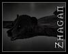 [Z] DA Black Bear Rug