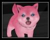 Shiba Pink
