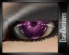 Purple Eyes V2