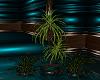 ~D~ T~N~T Plant Set V.1