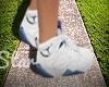 BlueBerry Jordans