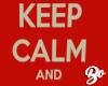 Keep Calm Kill The Idiot