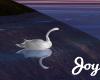 [J] Isle Animated Swan