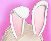 Bunny kawaii Pink