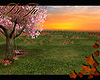 rD sunset picknick