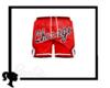 + Chicago Bulls Shorts