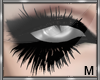 *D Doll Lashes