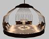 {DD} Circle Swing