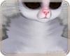 🐭 Flop | Neck Fur