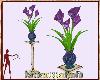 #KH#Arum Purple