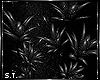 ST: Instinct Plant 2
