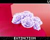 . yasei | shldr roses