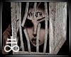 Cage Head M/F