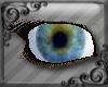 DS+realistic blue eye