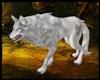 [G] Wolf Lupus Fenris