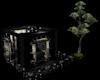 Chasitsu Cypress