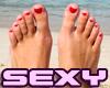 Small Lady Feet