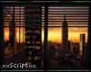 SCR. Window w/Blind v11
