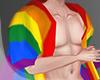 .LGBT. pride flag