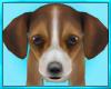 Beagle Puppy Decor