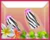 EC* Zebra Nails