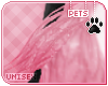 [Pets]Vimi |hip feathers