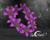 LEI -Purple