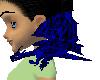 (e) blue/black drake
