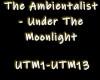 The Ambientalist - UTM
