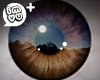 IMVU+ Mens Drk Brown Eye