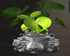 Lion Planter Silver