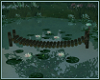 *N* Lily Bridge