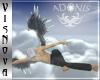[VN]ADONIS